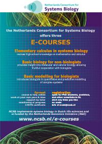 e-courses picture